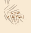 new arrivals banner social media story layout