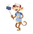 Selfie monkey vector image