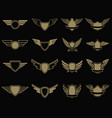 set winged emblems in golden style design vector image vector image