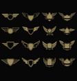 set winged emblems in golden style design vector image