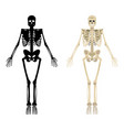 skeleton icon human skeleton front side vector image vector image