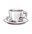 sketch tea cup hand drawn mug on vector image