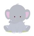 bacute elephant vector image vector image