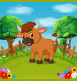 cartoon happy bull smile in the farm vector image vector image