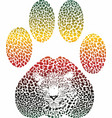 leopard color footprint vector image vector image