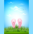 realistic hare ears easter green grass vector image vector image