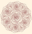 round linear rose flowers composition vector image