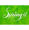 Spring word hand drawn lettering vector image
