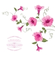 Bindweed flower on paper vector image vector image