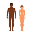 man and womanhuman front side silhouette isolated vector image vector image