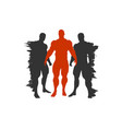 the set of 3 body building silhouette vector image