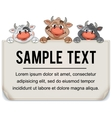 Funny Cartoon Cows with Blank Paper Sign vector image