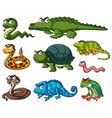 different kinds of reptiles vector image