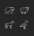 domestic and wild animals chalk white icons set vector image vector image
