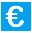 Euro Financial Icon vector image