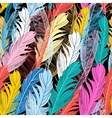 Graphic pattern multicolored feathers vector image