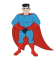 Handsome smiling superhero 3 vector image vector image