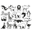 wild animals black and white graphic silhouette vector image