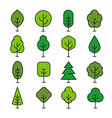 green tree outline vector image