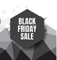 black friday design background8 vector image