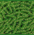 christmas seamless pattern with green fir vector image