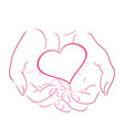 contour pink heart in women contour hands for vector image