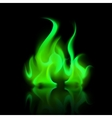 Green Magic Fire Flame Bonfire Isolated vector image vector image