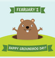 happy groundhog day greeting card vector image vector image