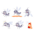 mosquito cartoon warning flying insects dangerous vector image vector image