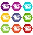 organic bio product icons set 9 vector image vector image