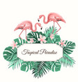 tropical paradise green leaves flowers flamingo vector image vector image