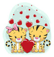 two cute tigers with hearts vector image vector image