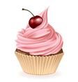 Cherry Cupcake vector image vector image