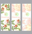 herbal tea collection cinnamon rose banner set vector image vector image
