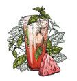 mojito cocktail watermelon and mint leaves vector image vector image