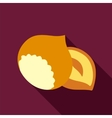 Nut flat icon Fruit vector image vector image