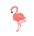 pixel art flamingo isolated on white background vector image