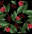 red holly christmas berries vector image vector image