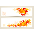 two autumn banners with color leaves vector image vector image