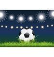 Soccer Ball and Night Stadium vector image