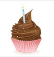 Chocolate Birthday Cupcake vector image vector image