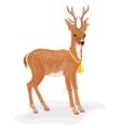 Christmas reindeer polar animal with bell