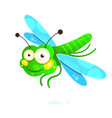 dragonfly with colorful wings beautiful isolated vector image