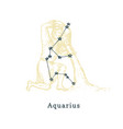 zodiacal constellation aquarius on background vector image vector image