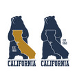 california t-shirt with grizzly bear vector image
