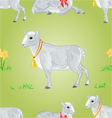 Easter lamb and daffodil seamless texture vector image vector image