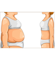 fat and thin vector image
