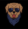 golden retriever eyeglasses vector image