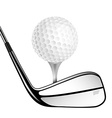 Golf ball and golf stick isolated on the white vector image vector image