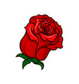 icon of bloody-red rose bud of beautiful vector image vector image